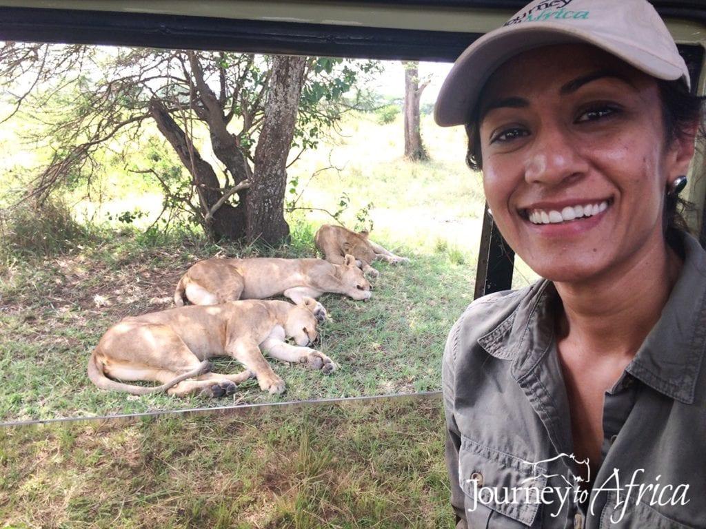 Safari, Africa, Tanzania, travel, wildlife, Journey to Africa, lions