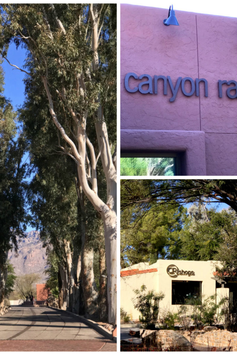 Spa, health retreat, wellness retreat, spa, relaxation destination, healthy vacation