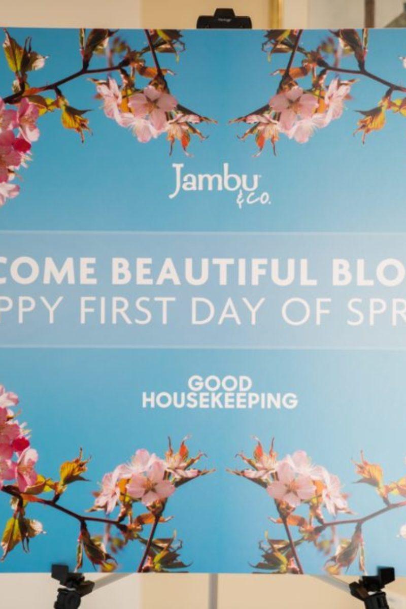 Jambu, footwear, Good Housekeeping, New York City, Blogger Event, shoes, lunch, tour,