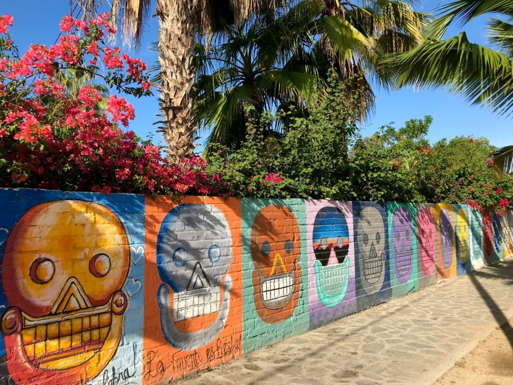Day of the Dead wall, mural, Todos Santos