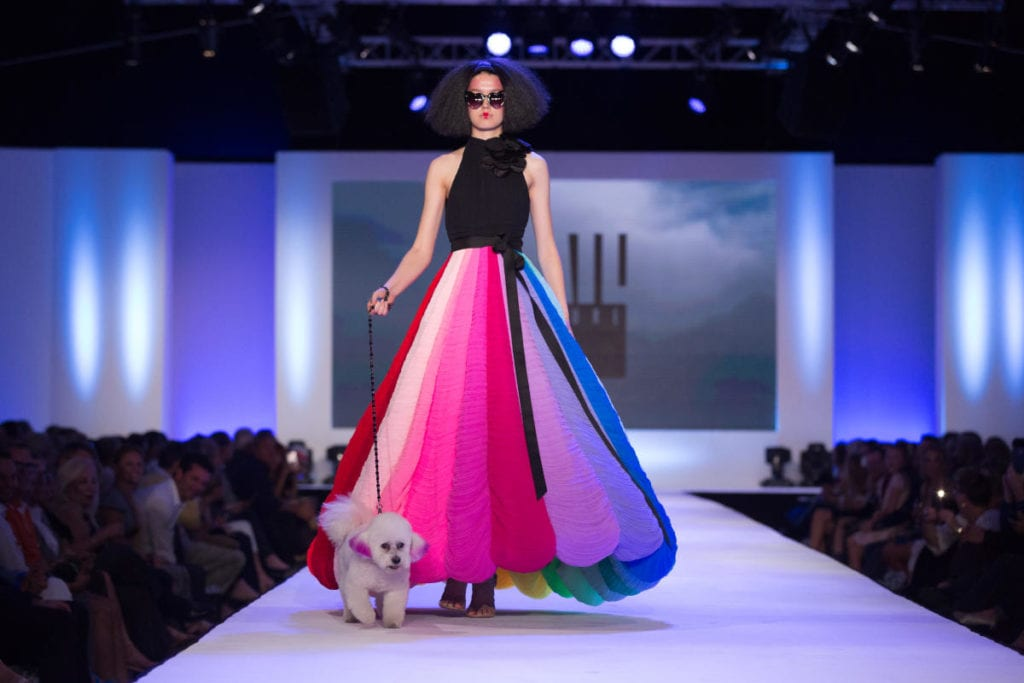 Runway show with Le Chien dogs