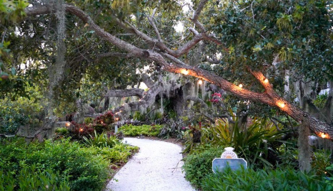 gardens, nature, earth