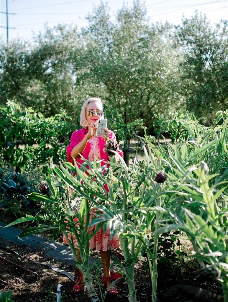 SheShe in the garden