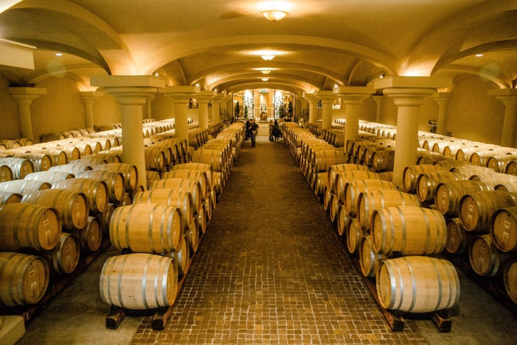 wine barrels-Ferrari Carrano Vinyard