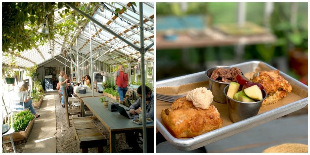 greenhouse-plants=breakfast-restaurant
