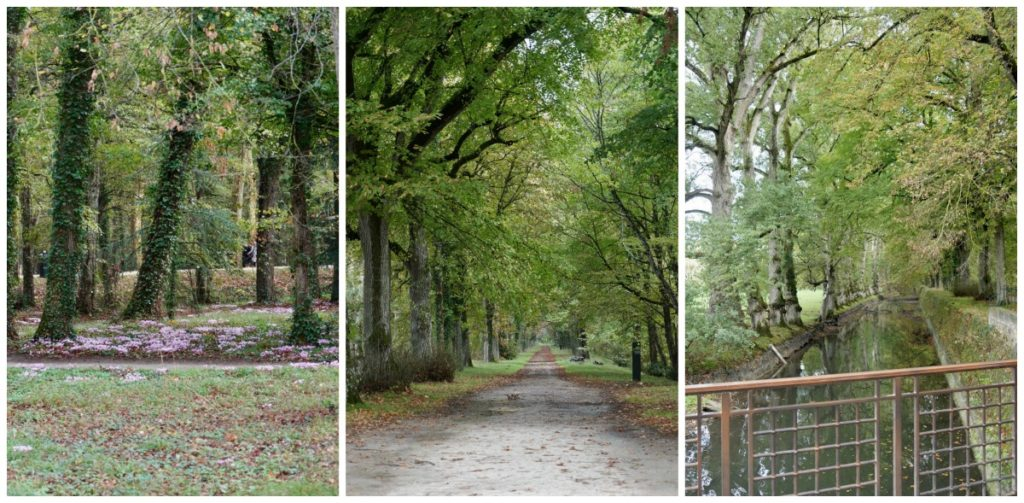 The grounds of Chateau in Loire Valley