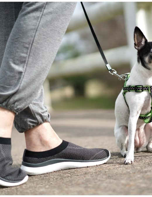 sheree Frede of the SheShe Show walking dog across a bridge wearing athleisure