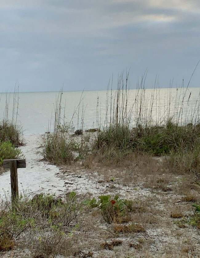 beach, dunes gufl of Mexico