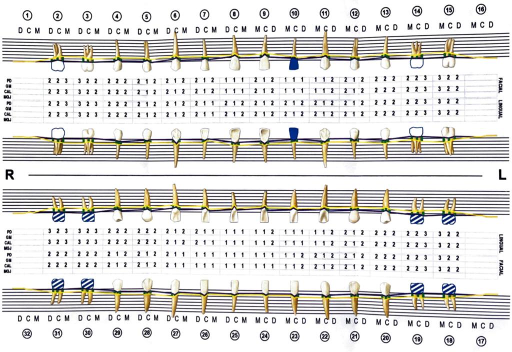 Gum Pocket Chart